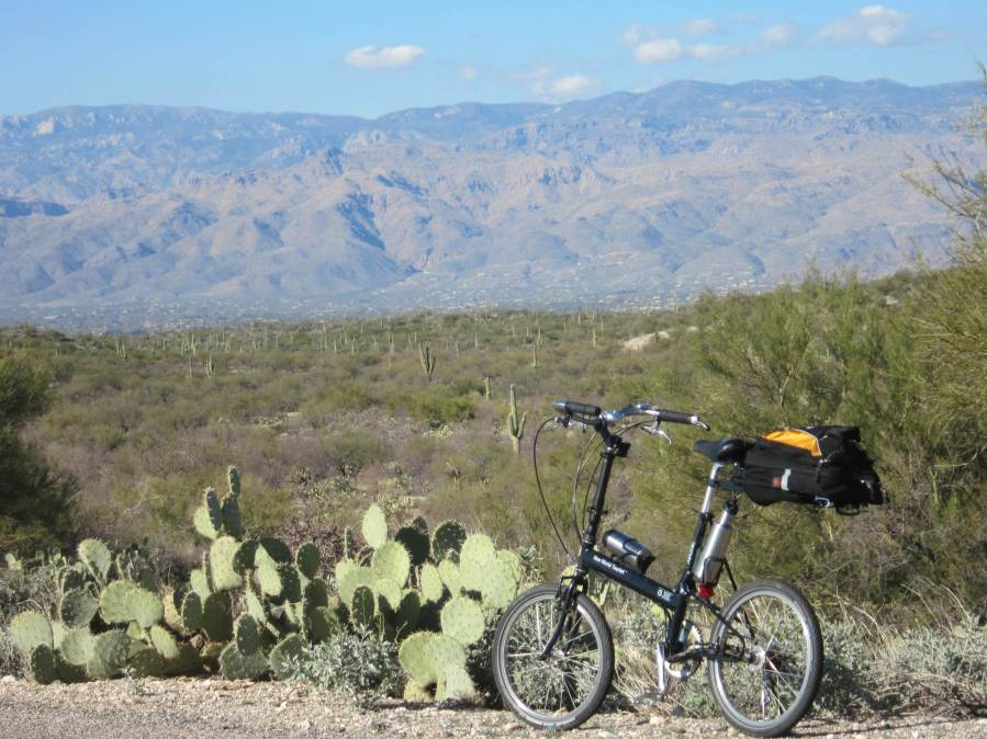 Saguaro National Park by bike
