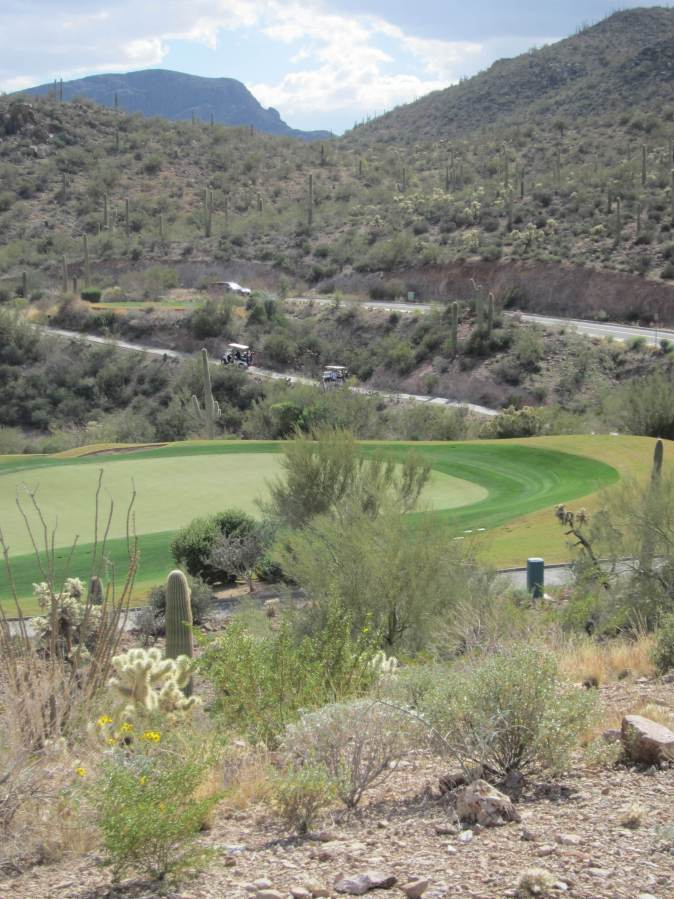 Golf course in the desert. Why?